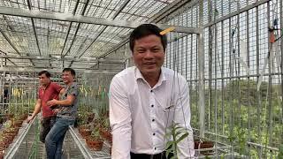 Clb hoa Lan văn lâm Hưng yên về thăm vườn Lan mạnh còi chúc các anh Sức khỏe hạnh phúc thành công