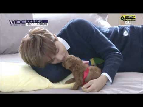 EXO Kai with a cute puppy ㅠ♡ㅠ
