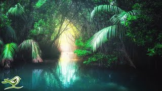 放鬆 -Soothing Relaxation - Music Channel Music Performer