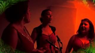 Bekijk video 1 van Christmas Delight op YouTube
