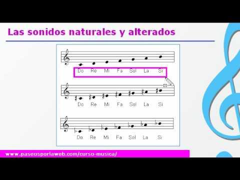 Curso de música - Las notas y sonidos musicales