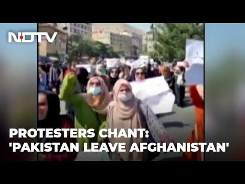 Taliban fire shots to disperse anti-Pakistan rally in Kabul