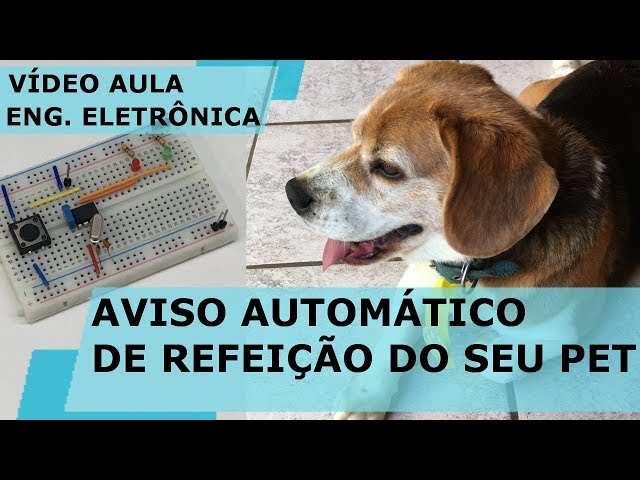 AVISO AUTOMÁTICO DE REFEIÇÃO DO SEU PET | Vídeo Aula #208