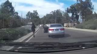 "Woman ""Ghost Riding the Whip""  into oncoming traffic"