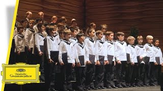 Vienna Boys Choir Christmas.Vienna Boys Choir Merry Christmas From Vienna 1 Cd