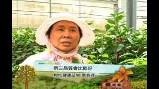 客家身影-農業系列