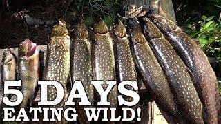 120-HOUR Survival Challenge! | The Wilderness Living Challenge Season 1