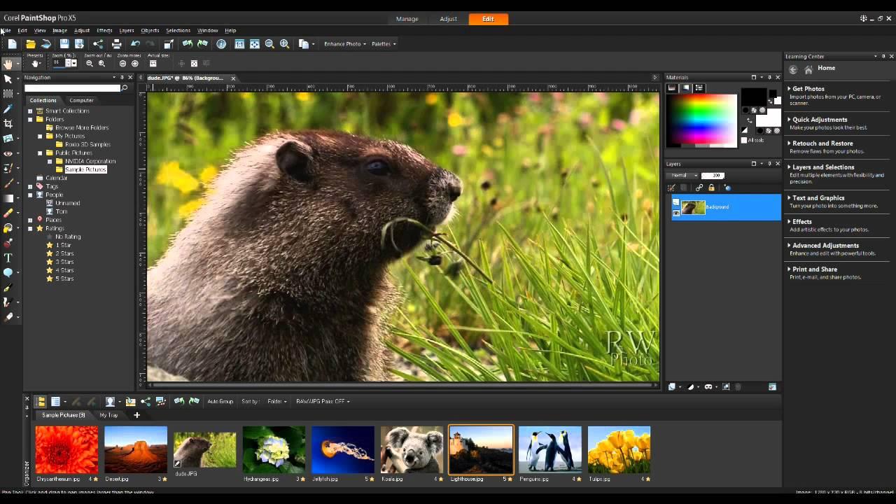 PaintShop Pro X5 cheap license