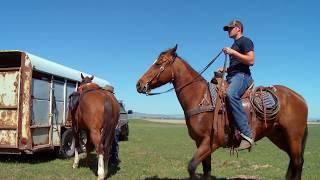 JT Ranch