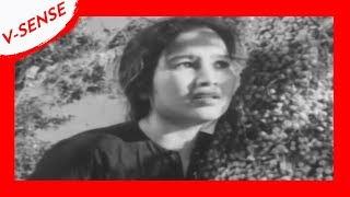 Best Vietnamese Movies | Mrs. Tu Hau | Full English & Spanish Subtitles