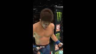 LAS VEGAS UFC 2019