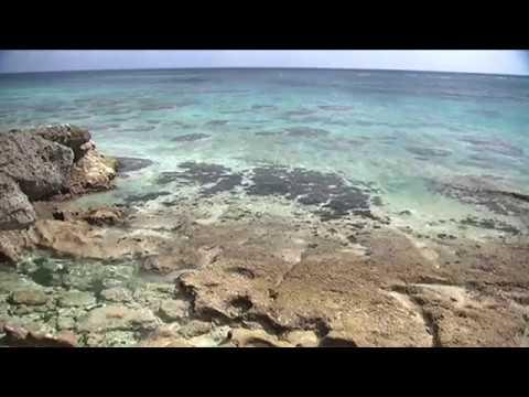 【癒やしBGM】リラックスタイム、BEGINと過ごす沖縄オーシャンウィークエンド! ~癒しの「音来奏(ニライカナイ)」