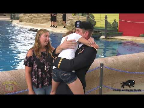 🔴 Soldiers Coming Home Surprise Compilation 72