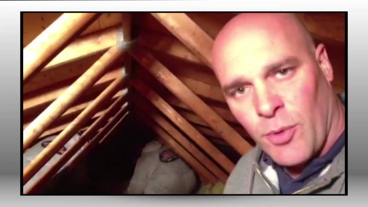 Removing Attic Insulation With Bryan Baeumler Insta