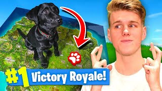 Using A PUPPY To WIN FORTNITE Battle Royale!