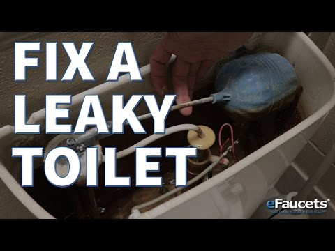 How To Fix A Leaky Toilet - eFaucets.com