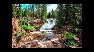 Relaxing Harp Music Peaceful Background Music for Home and Office!