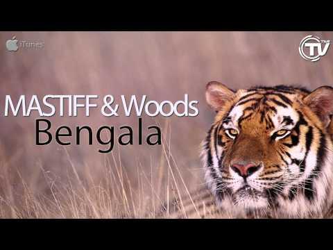 MASTIFF & Woods - Bengala (Radio Edit) - Time Records