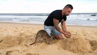 When Your Pet Kangaroo Is Your Best Friend