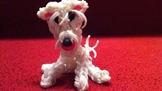 כלב מגומיות