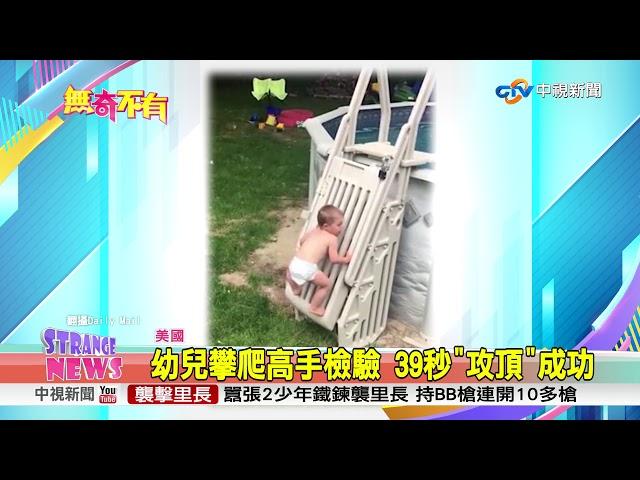 """幼兒攀爬高手檢驗 39秒""""攻頂""""成功"""