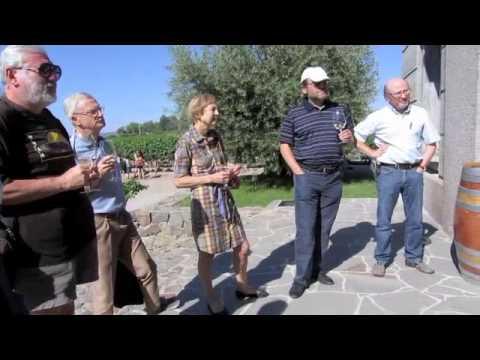 Mendoza Vineyard Tour, Argentina | Bella Treks Travel & Consulting