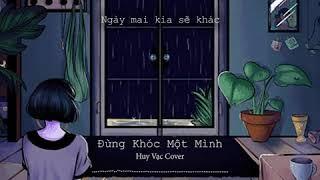 Đừng Khóc Một Mình (Acoustic Cover) | Quang Hùng - Huy Vạc