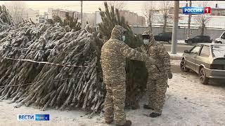 В Омске сегодня заработали ёлочные базары