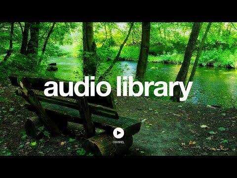 The Creek - Topher Mohr and Alex Elena (No Copyright Music)