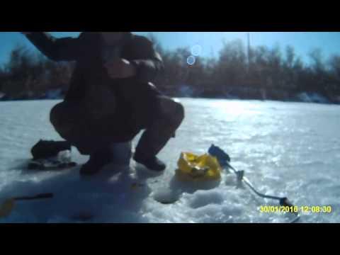 прогноз рыбалки в маяках одесской области