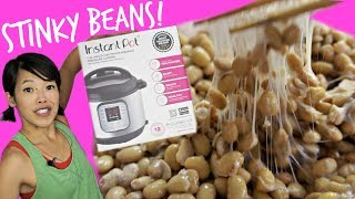DIY Instant Pot Natto - Homemade Fermented Stinky Soybeans