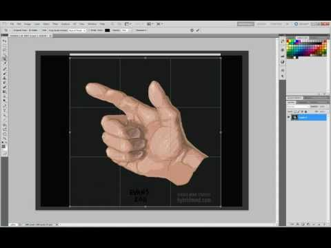 Hand 5 - Off Hand - Daily Drawing Time Lapse