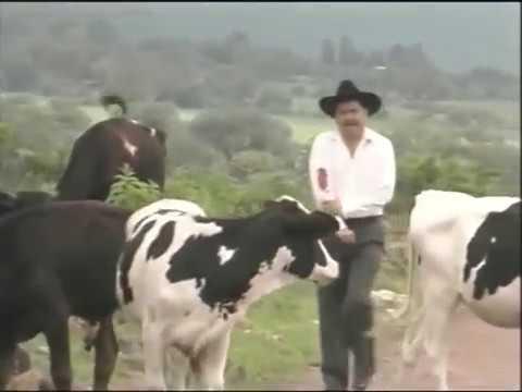 LA MAFIA MICHOACANA(PELICULA COMPLETA)