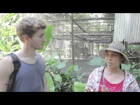 Cuc Phuong Primate Rehabilitation Centre - Saunders and Ollie + Stray Asia