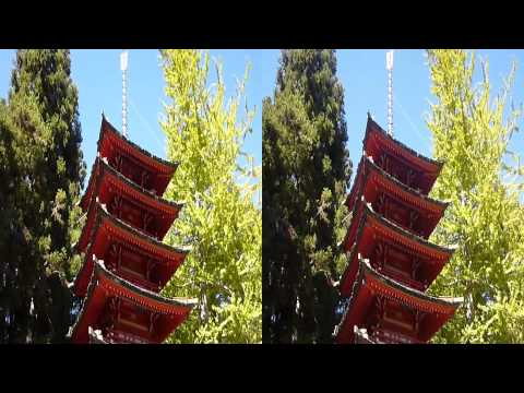 Japanese Tea Garden in Golden Gate Park (YT3D:Enable=True)