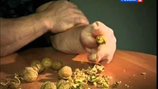 ZOVU GA HULK! Ima šake kao lopate, orahe lomi sa dva prsta! (VIDEO)