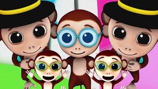 ห้าลิงน้อย   สัมผัสสำหรับเด็ก   Five Little Monkeys   Baby Box Thailand   เพลง เด็ก อนุบาล