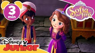 Sofia The First | Pin the Blame on the Genie | Disney Junior UK