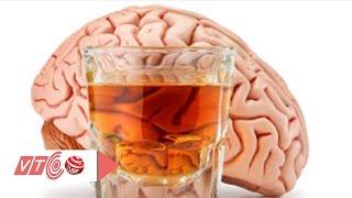 Rượu phá huỷ cơ thể người như thế nào? | VTC
