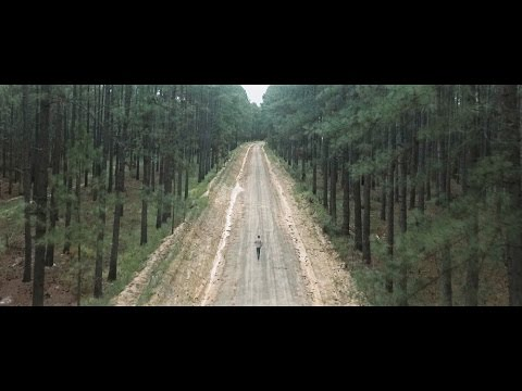 Hollow Coves - The Woods (Official Music Video)