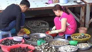 Chợ Cầu Sấu Phú Quốc Hải sản mới về/Seafood Market Phu Quoc