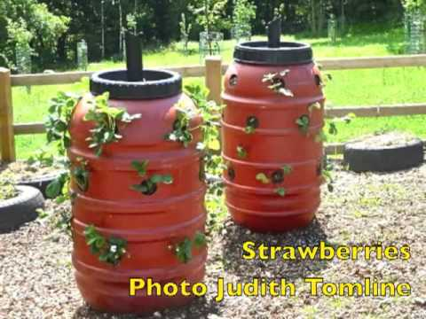 How To Set Up A Vertical Garden Tower And Grow Your Own Vegetables Part 1 Of 2 Musica Movil