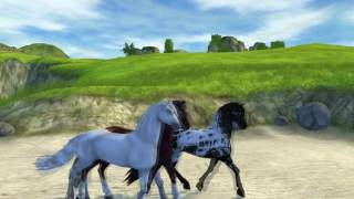 SSO - Dressage sauvage [Blacksea]