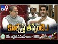Chandrababu should be a role model with 40 yrs of experience: CM YS Jagan