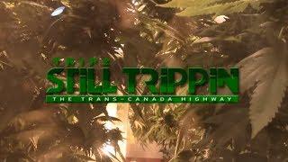Still Trippin' The Trans-Canada Highway (full movie)