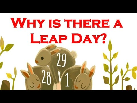 Why is there a Leap Day? Google Shows Doodle for Leap Year 2016