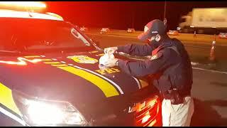 PRF prende homem por tráfico de drogas na BR-290, em Eldorado do Sul