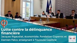 Mission d'évaluation lutte contre la délinquance financière – Auditions Think tank et chercheur
