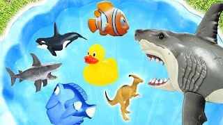 Learn Colors with Wild Zoo Animals Sea Animals Wild Farm Animals Baby Mom FunToys For Kids