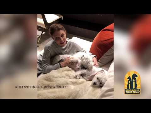 """Bethenny's Remember Me Thursday message is, """"Many pets are waiting to be adopted in shelters. On this Remember Me Thursday®, please join me in being their voice. As 2019's Official Spokesperson, I ask you to join me on social media on September 26th and tell the world that pet adoption is the way to go!"""" Join her and all our Remember Me Thursday luminaries at: https://remembermethursday.org/luminaries/"""